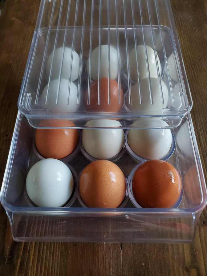A dozen eggs are in a plastic egg storage container. The eggs range in color from light blue, to light green, and dark brown. The eggs have a sheen on their shell from being used in a float test. The container is partially covered with a clear plastic lid that will be fully placed over the container during storage.