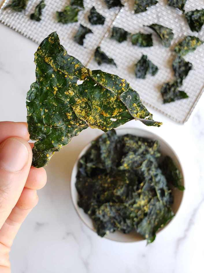 The kale chips after they have been dried are shown. A hand is holding one of the pieces to show how they look once finished. There are specks of yellow and orange seasoning on the dark green kale chip.  Below the featured piece is a bowl full of finished kale chips and a drying rack with the remaining kale chips.