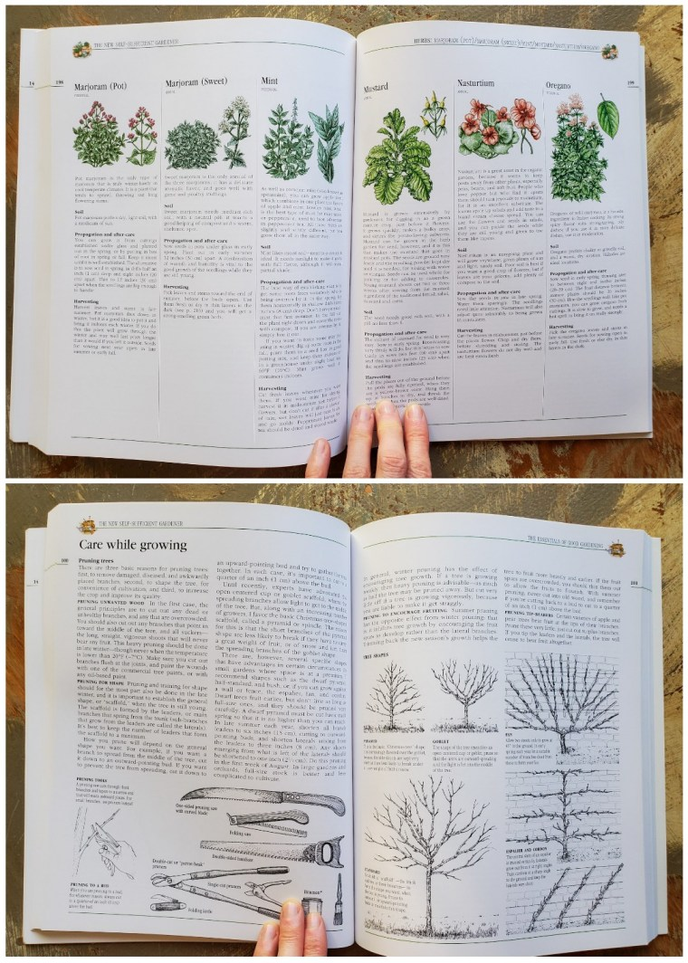 A two page image collage, the first image shows the inside of a book that is describing different types of herbs, from marjoram to mustard and nasturtium. The second image shows the same book open to a different page that shows different types of pruning techniques along with the various tools used for the job.