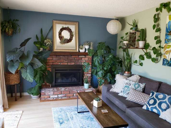 A room is shown with a brick fireplace as the center piece, a grey couch to the right along a wall and a walnut brown skinny coffee table in front of the couch. The room is adorned with houseplants, some larger ones in the corners of the room, flanking the fireplace, a few smaller ones are tucked around the fireplace and on shelving along the wall. There is a vine type houseplant along the ceiling coming into the frame along the right side of the image. Create a room or house full of light and plants to help reduce stress.