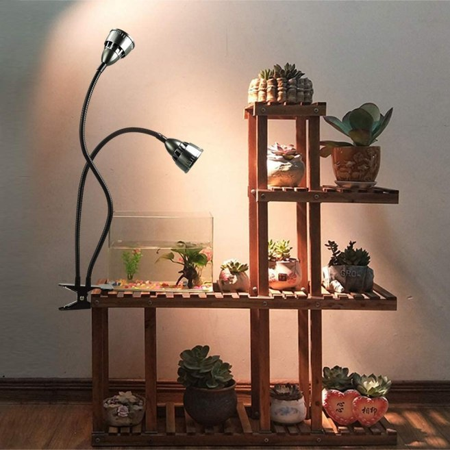 A tiered wooden shelving unit with various potted succulents and a small glass vase with two water plants growing under water are shown with a clip on houseplant light with two bulbs that can be adjusted with bendable arms to keep plants happy in low light settings.