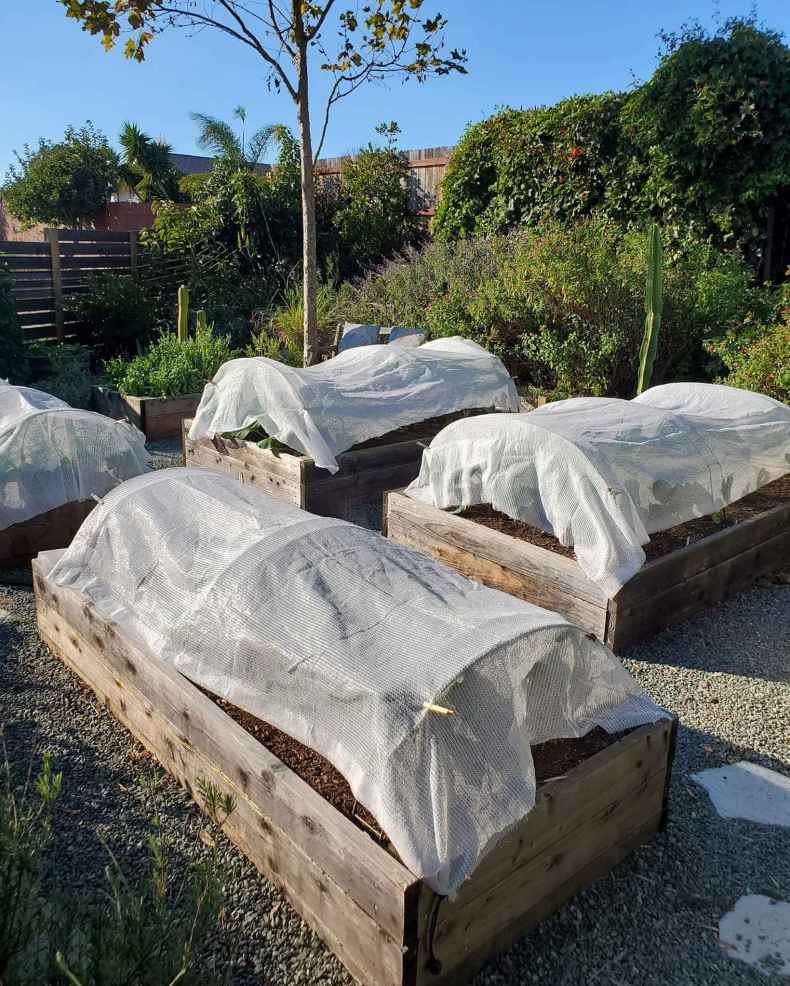 Raised garden beds are affixed with hoops and shade cloth as row covers to protect the plants below from extreme heat while helping maintain the temperature and moisture of the soil.