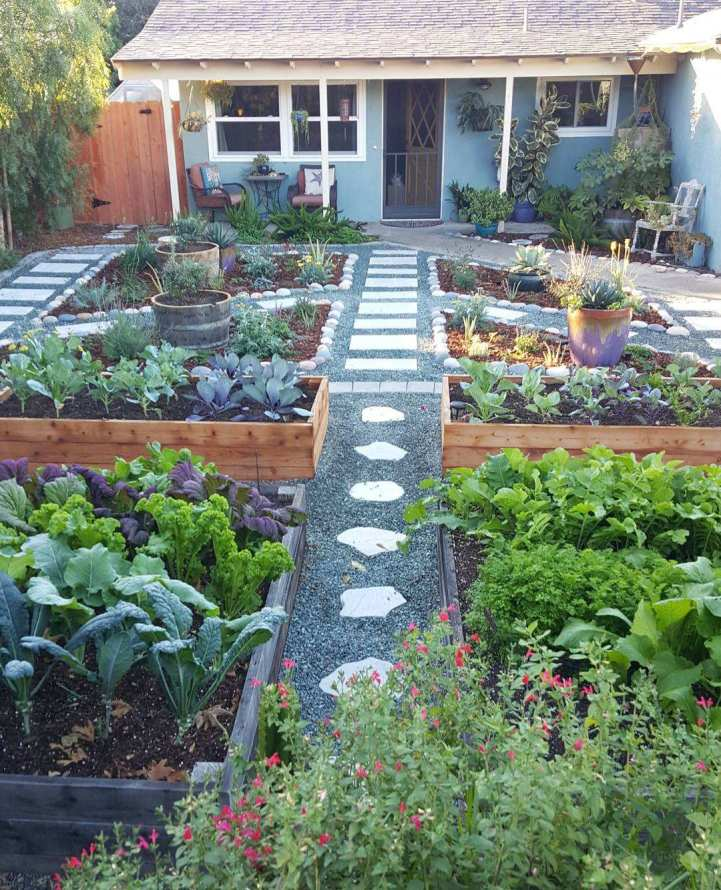 A view of the front of a blue green house, in the foreground lies four raised garden beds that are filled with cool season vegetables such as kale, mustard greens, bok choy, radish, carrots, cabbage, and cauliflower. There are gravel lined pathways with stone pavers leading towards the house. There are four smaller planting islands that are in ground with perennial and annual plants closer to the house.