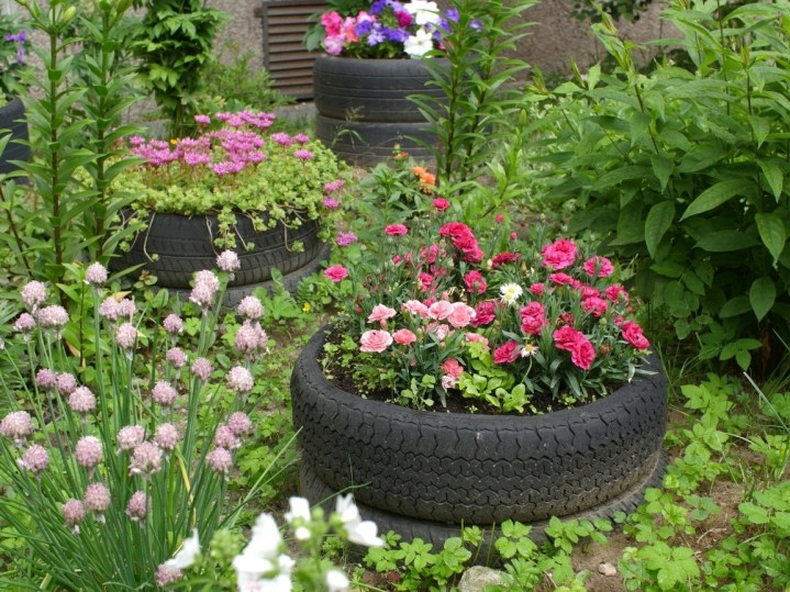 Three used tires are being used as planters for annual flowers amongst a sea of green and flowering plants. Be sure to avoid using unsafe materials for raised garden beds if you are going to be growing your own food.