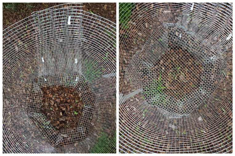A two way image collage of the inside of a homemade gopher basket. The first image shows the inside of the gopher basket before the bottom piece is affixed to close the opening at the bottom. The second image shows the inside of the basket after the bottom piece has been tied to the rest of the basket.