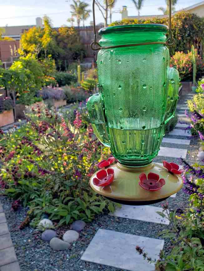 A green glass hummingbird feeder in the shape of a cactus hangs from the eave of a front porch. Beyond lies a garden with numerous flowering annual and perennial plants.