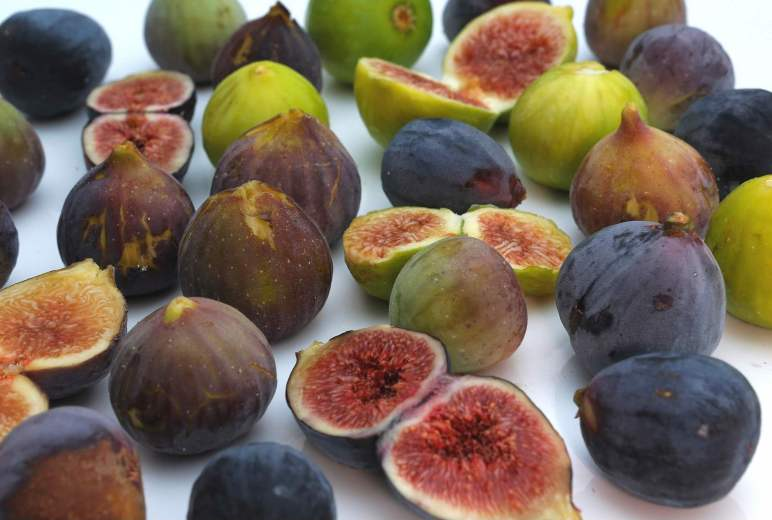 Various fig varieties are displayed amongst a white background. They vary in color from purple to bronze to different shades of green. A few of the figs have been cut open lengthwise revealing flesh that is varied in color from dark purple, light strawberry color, and golden honey.