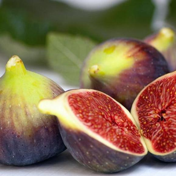 Purple bottomed figs with more bronze towards their neck and in focus. One of the figs has been cut in half lengthwise, revealing an incredibly rich and vibrant dark amber pulp within.