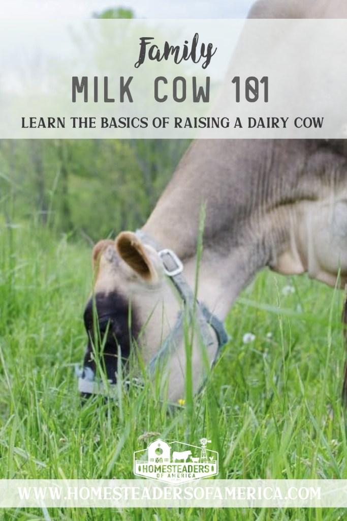 Family Milk Cow 101