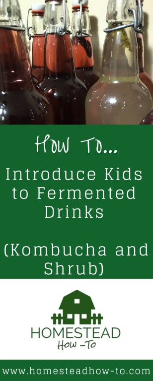 How to Introduce Kids to Fermented Drinks