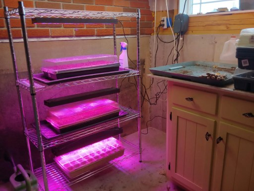A DIY grow light seed starting stand in use