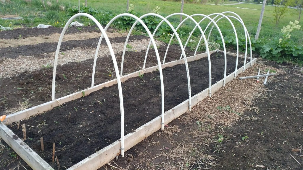 PVC Pipes used to hold garden fabric or row cover on a raised bed