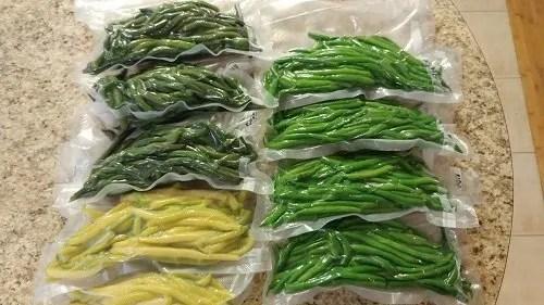 vacuum sealed green beans