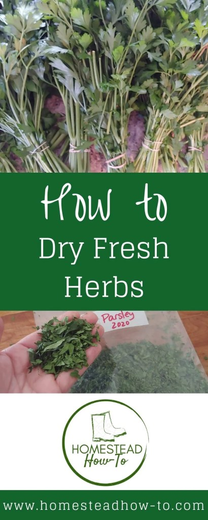 How to Dry Fresh Herbs