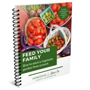 Feed your family ebook