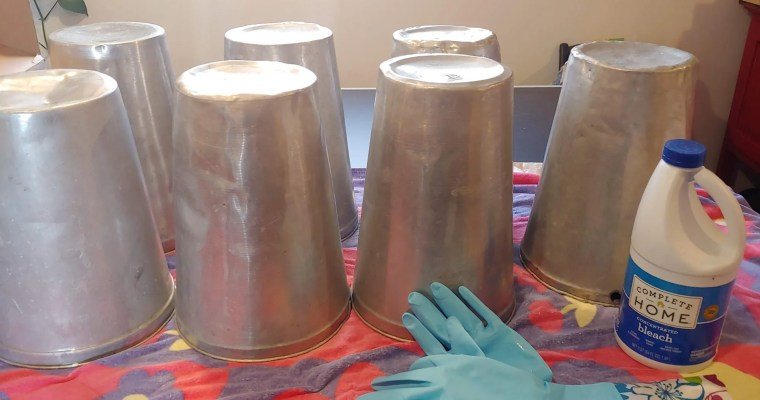 How to Clean Maple Sap Buckets
