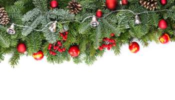 14 Natural Christmas Garland Ideas To Adorn Your Homestead