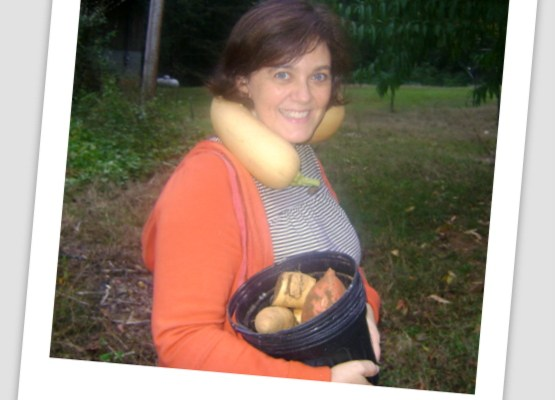 Neck Pumpkins – a really big squash