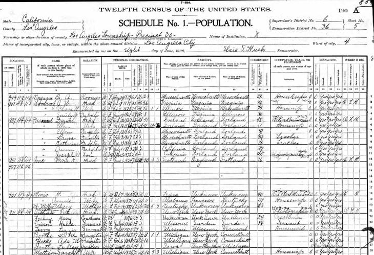 mattison-1900-census