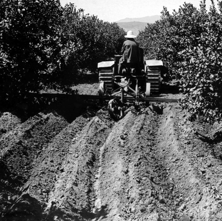 14242 Furrowing With Tractor For Irrigation In Lemon Grove San F