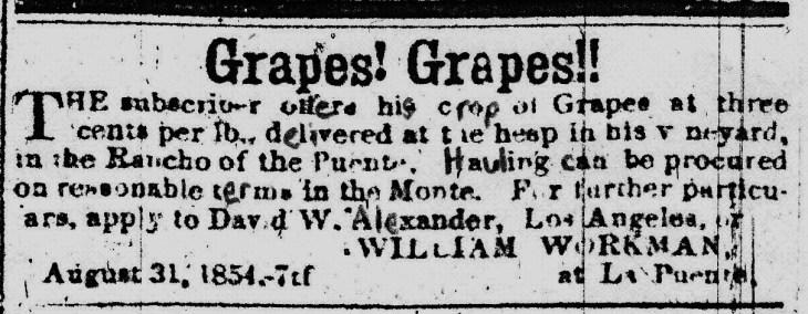 Workman grapes ad 1854