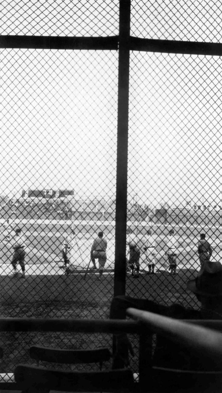 A Snapshot Of Wrigley Field Baseball Game 2014.977.1.3j