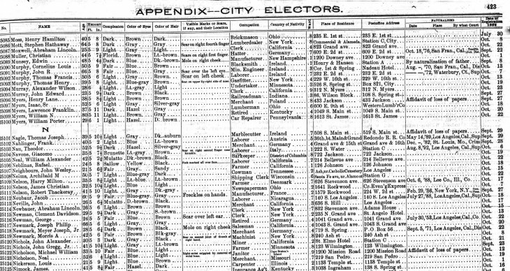 Nichols Jr 1892 voter reg LA