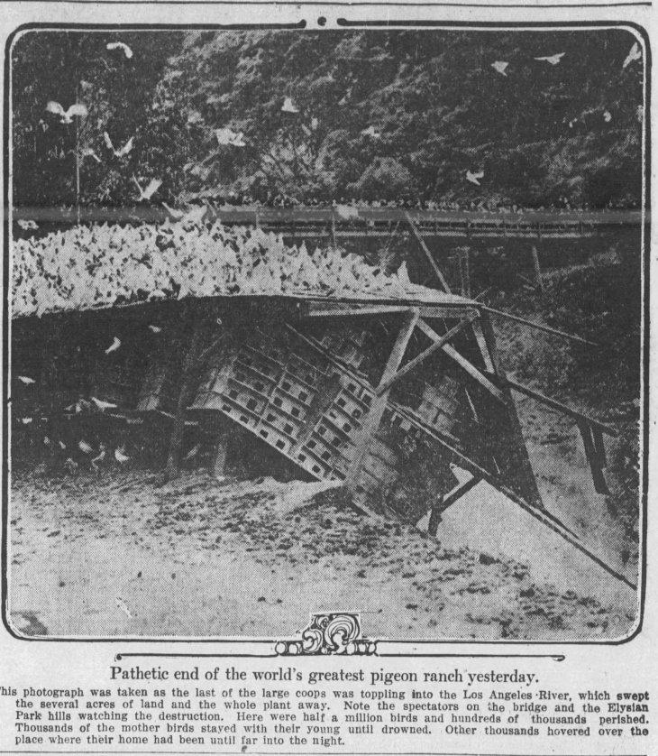 The_Los_Angeles_Times_Sun__Feb_22__1914_