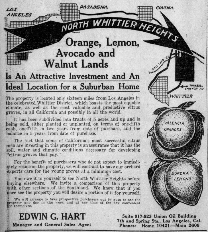 NWH ad Los_Angeles_Express_Sat__Nov_22__1913_