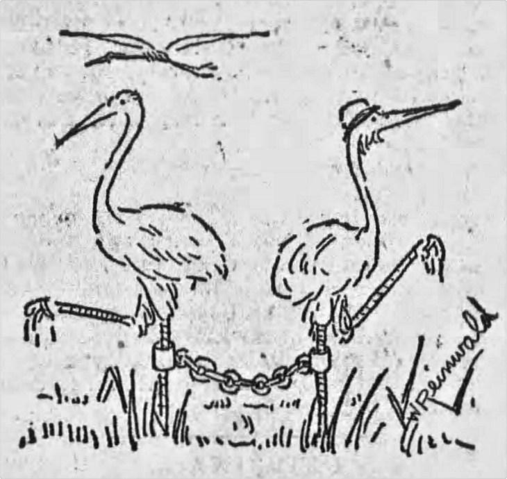 Yda divorce suit findings stork image The_Los_Angeles_Times_Sun__Feb_7__1892_