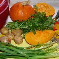 Gemeinsames Kochen - Vegan-Kochkurs