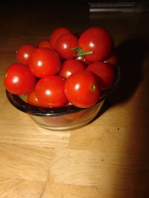 Cherry tomatoes, ripening so fast they are falling from the vine