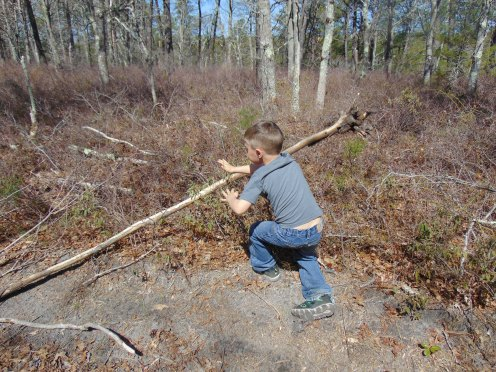 Asher, 4, selecting light weight sticks that to use