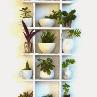 34+ Details Of DIY Ladder Plant Stand 1