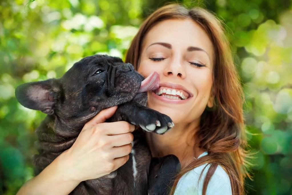 dog licking woman face