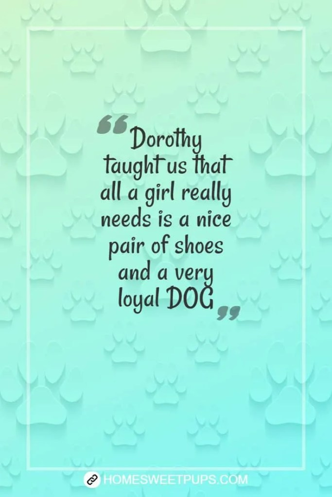"Quotes about dogs loyalty "" Dorothy taught us that all a girl really needs is a nice pair of shoes and a very loyal dog"""