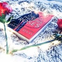 Chronique : Un palais d'épines et de roses| Sarah J Maas