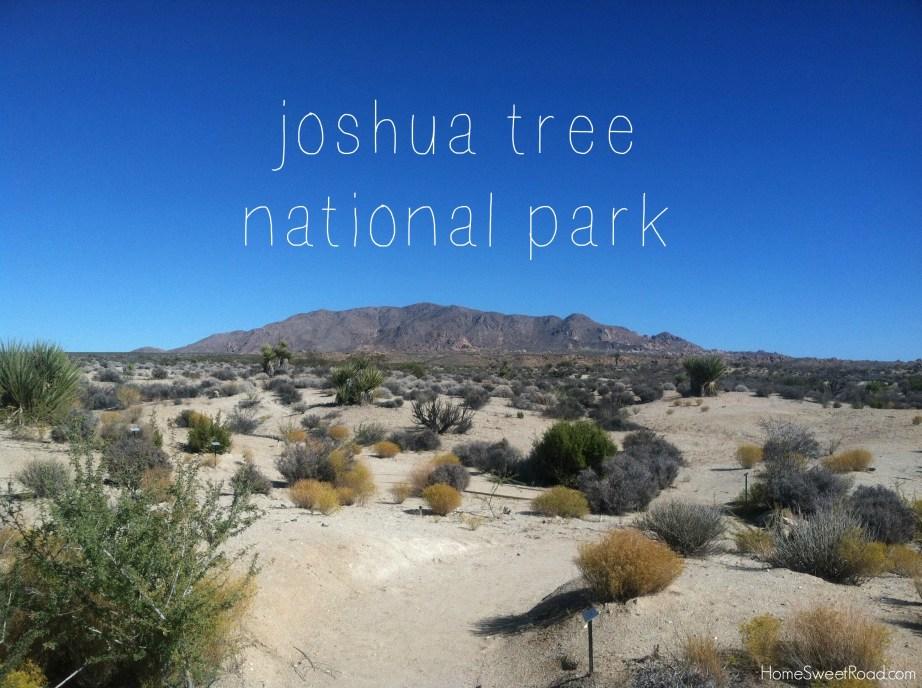 joshua tree park