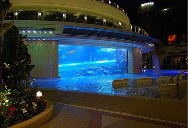 Golden nugget shark tank pool