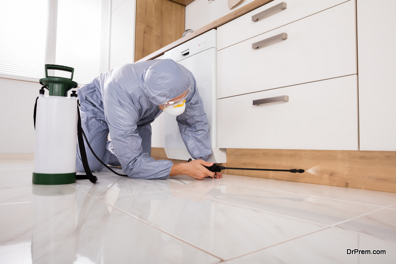 Treating Your Home for Pests