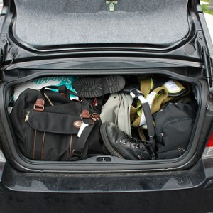 packed-trunk