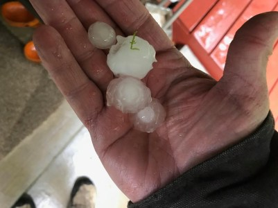Hail Picture submited to Ozarks First by Doug Dean from Blue Eye.