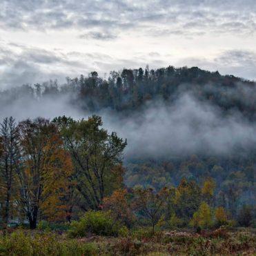landscape fog rising