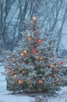 Great Outdoor Christmas Lights Decoration Ideas