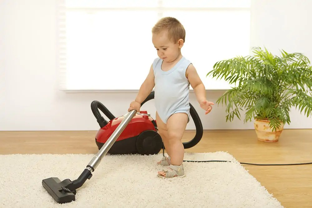 What Is The Best Vacuum For Carpet?