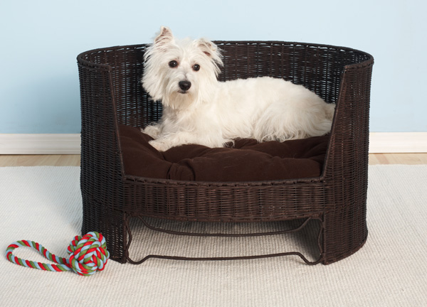 luxury dog furniture 2