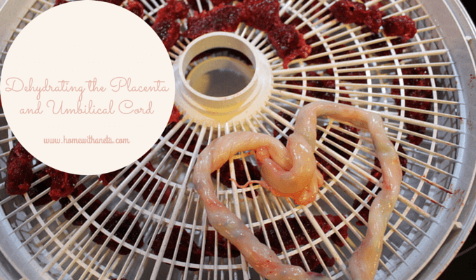 dehydrating the placenta and umbilical cord