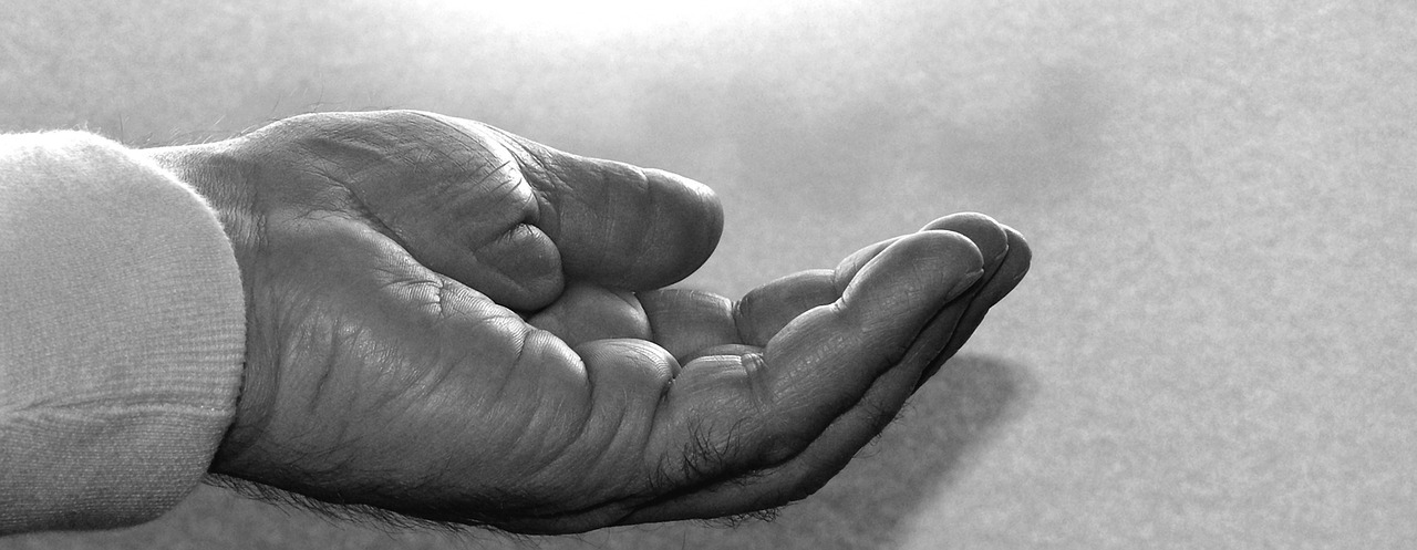 Canadian Seniors: The Give Back Generation