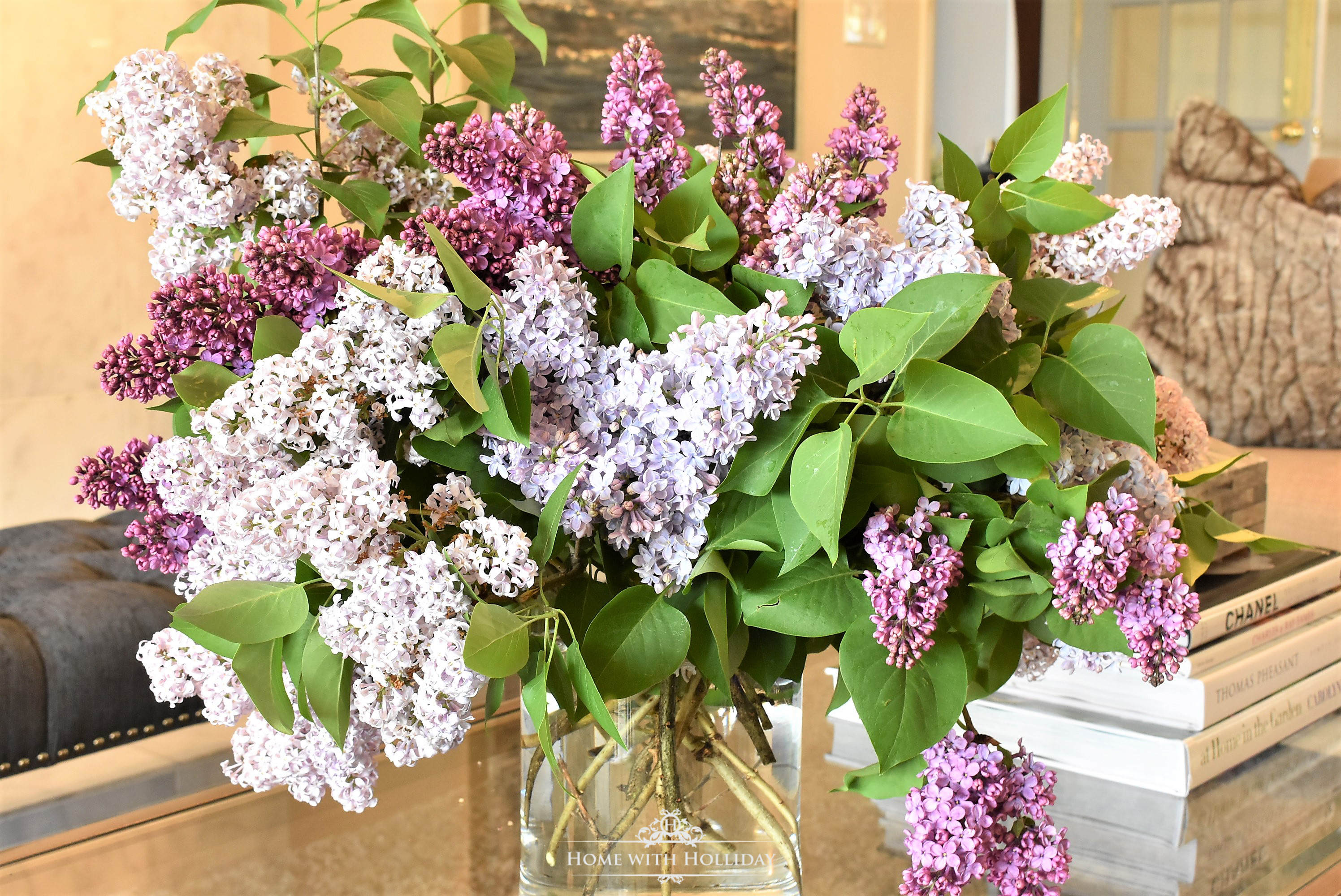 Pruning and Enjoying Lilacs 20