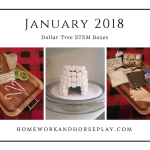 January 2018 Dollar Tree STEM Boxes from Homework and Horseplay